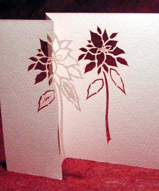 Poinsettia by Ingrid Siliakus